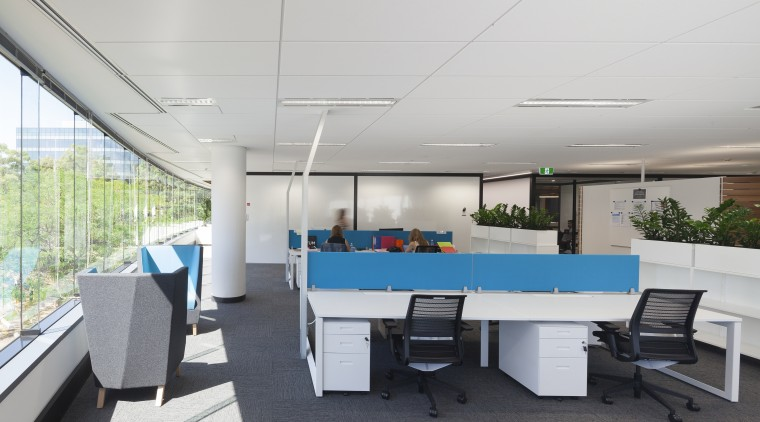 Workstation dividers add a splash of colour in architecture, interior design, office, real estate, table, gray