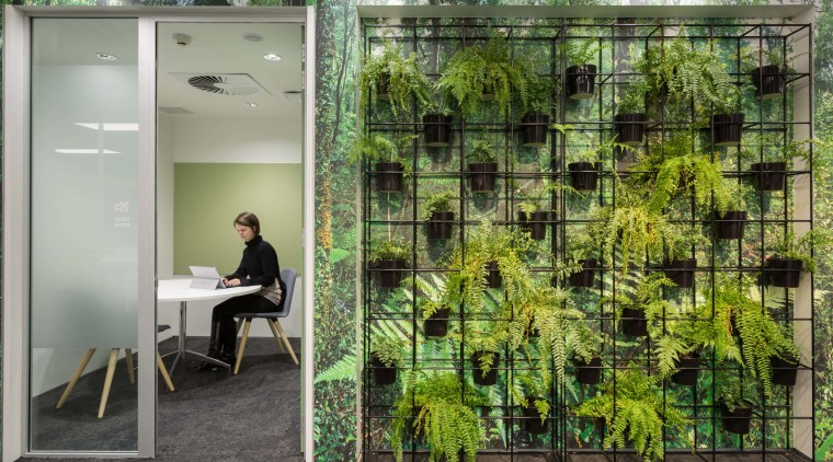 These quiet rooms are fronted by a native architecture, grass, green, plant, tree, gray