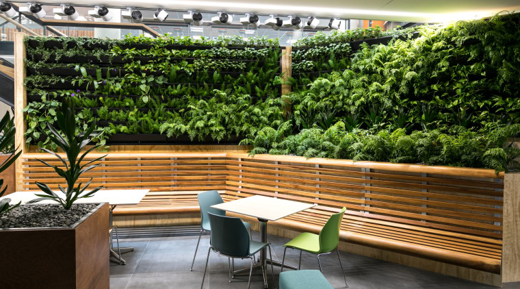Joinery for the large green wall on Level courtyard, furniture, outdoor structure, patio, plant, table, brown