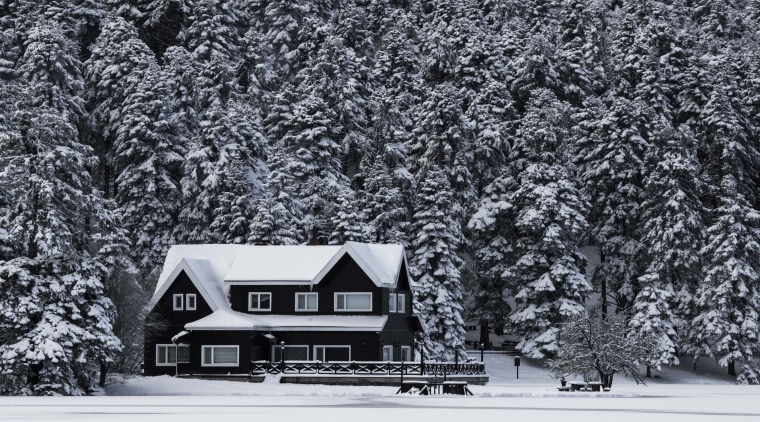 Before rushing out and buying a new heating black and white, freezing, frost, home, house, landscape, monochrome, monochrome photography, snow, tree, winter, woody plant, gray, black