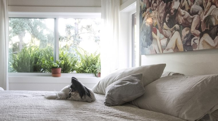 In summer, the home has a leafy outlook bed, bed frame, bedroom, floor, flooring, furniture, home, interior design, living room, property, room, textile, window, window covering, window treatment, wood, white, gray