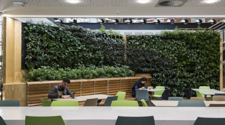 The Datacom building features a green wall plant, roof, gray