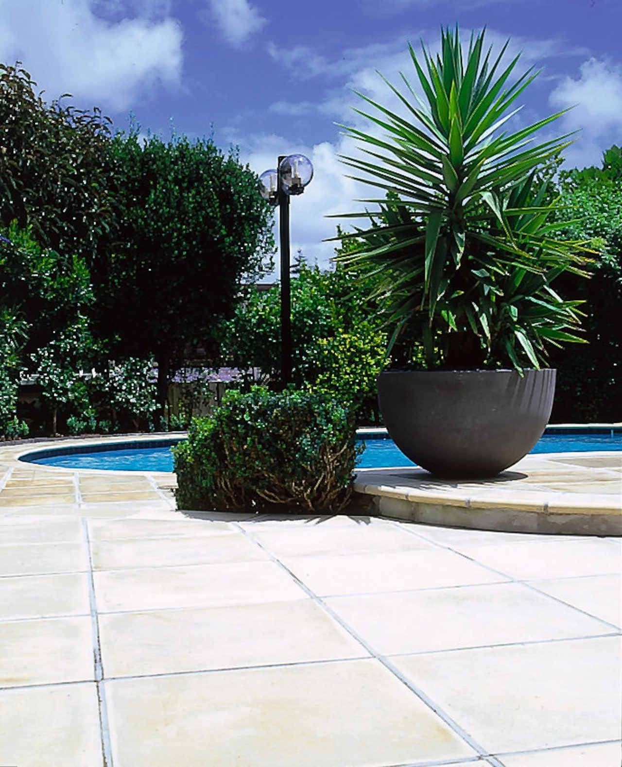 Smooth, light coloured pavers surround a pool, with arecales, backyard, flowerpot, garden, grass, landscape, landscaping, leaf, outdoor structure, palm tree, plant, sky, tree, yard, white
