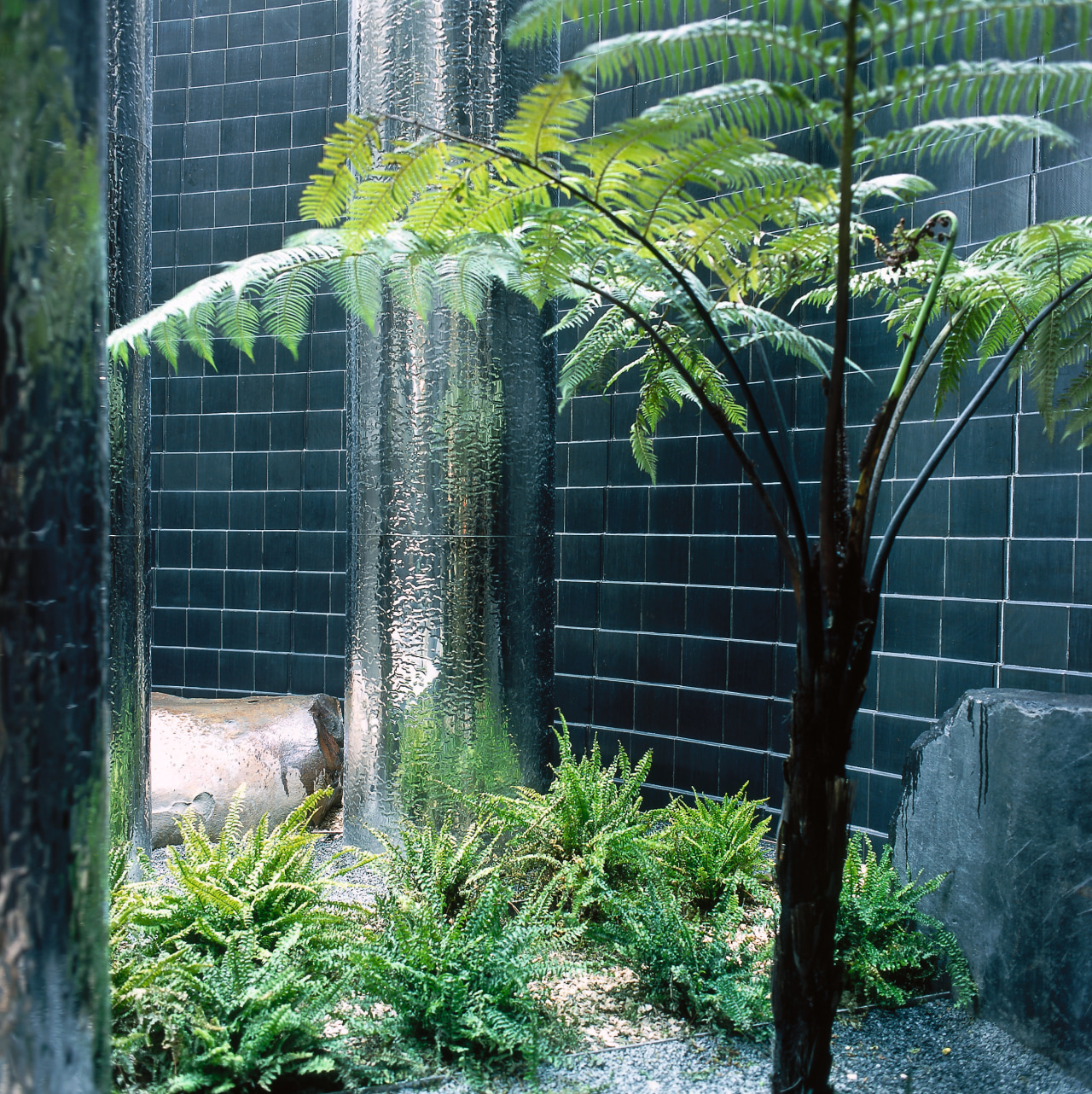 Water Systems Treatment Specialists Ltd organized the treatment biome, fence, grass, outdoor structure, plant, tree, vegetation, black, green