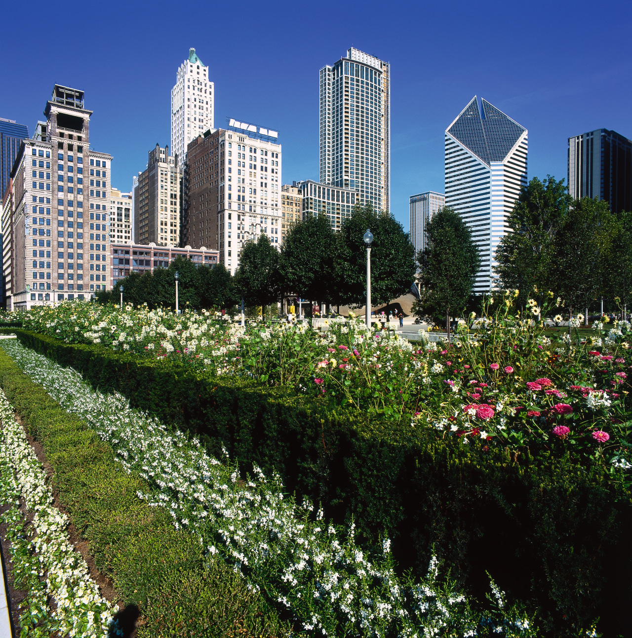 Large garden in inner city park. botanical garden, city, cityscape, condominium, daytime, downtown, flora, flower, garden, grass, leaf, meadow, metropolis, metropolitan area, neighbourhood, park, plant, residential area, sky, skyline, skyscraper, suburb, tower block, tree, urban area