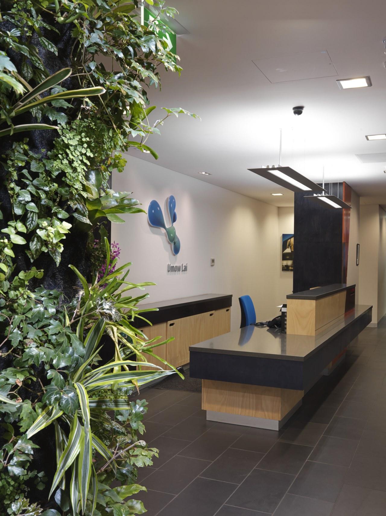 Desks are positioned to take advantage of maximum architecture, house, interior design, plant, black