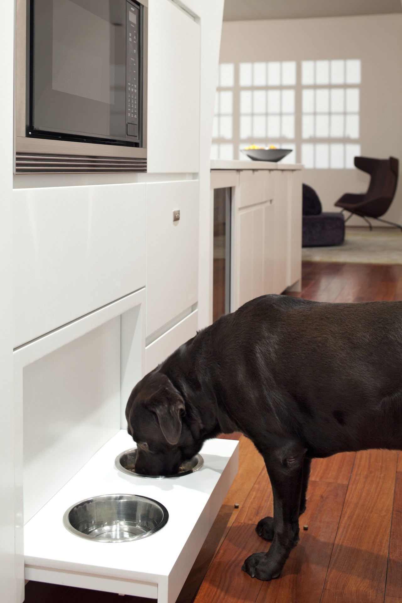 Here is a view of a kitchen designed black, dog, dog like mammal, floor, flooring, furniture, home, interior design, living room, room, table, wood, gray
