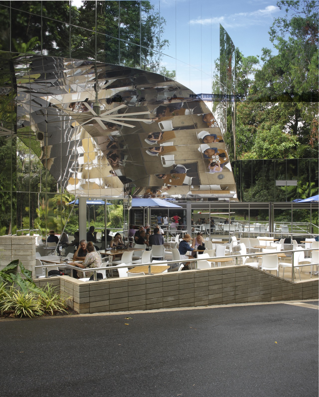 outdoor view of Cairns Botanic Gardens Visitor Centre tree, black, gray