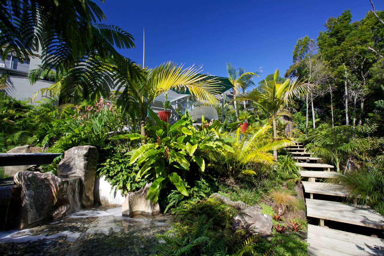 Designed by Mark Read, Natural Habitats, this garden arecales, botanical garden, estate, flora, garden, landscape, nature, palm tree, plant, real estate, resort, tourist attraction, tree, tropics, vegetation, water, brown
