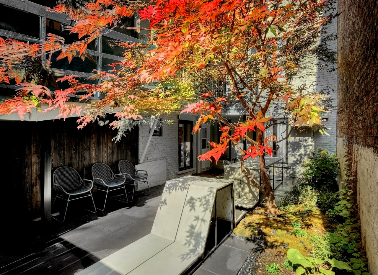 The owners wanted designer Martine Brisson and landscape architecture, autumn, branch, building, deciduous, flower, leaf, maple, maple leaf, nature, plant, red, room, sky, tree, woody plant, brown