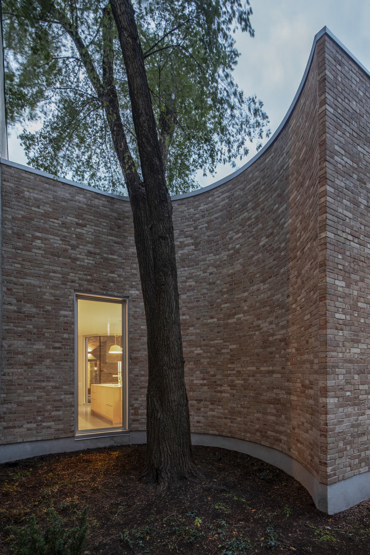 The elegantly curving facade accentuates the tree and