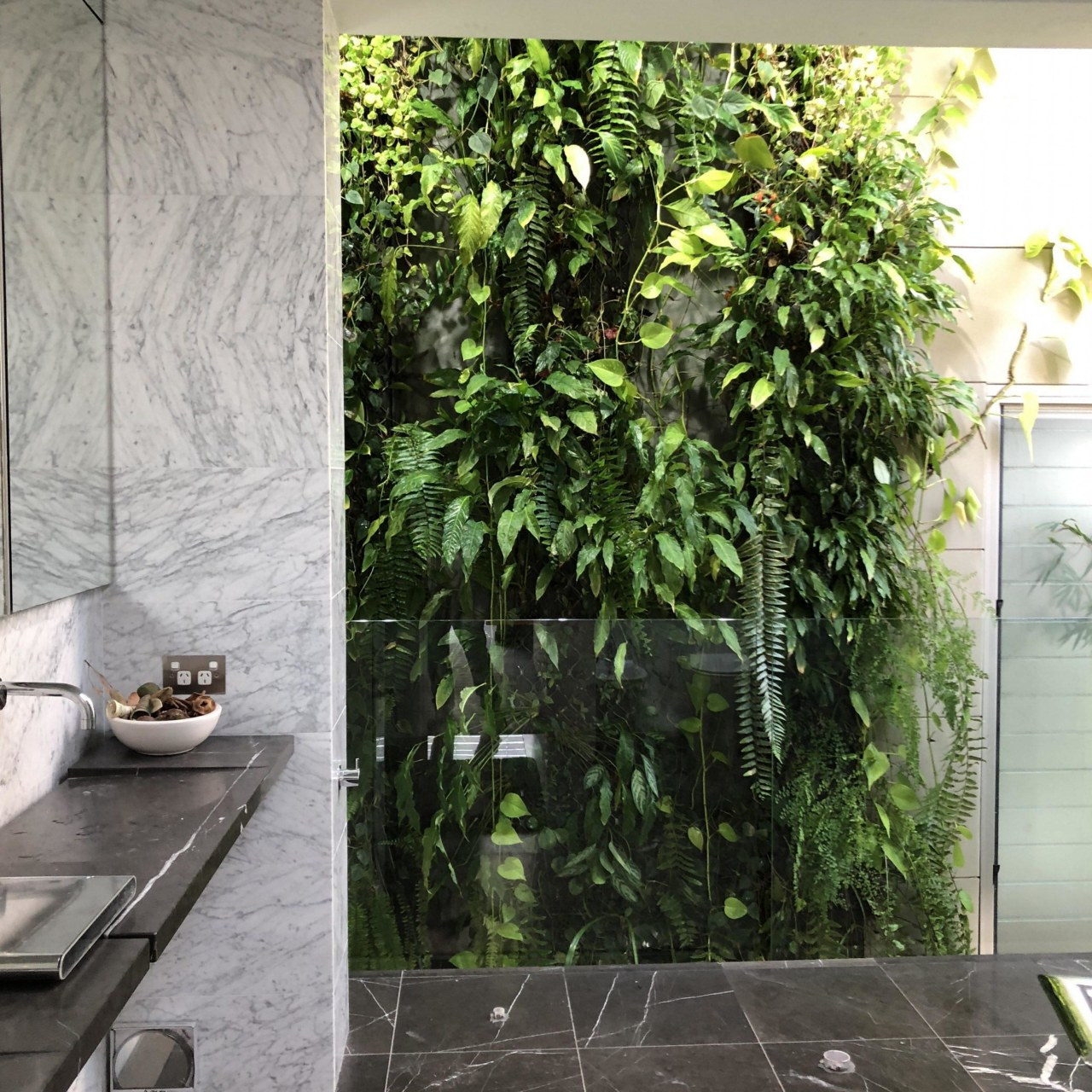Bringing in a green plant – or several flowerpot, houseplant, interior design, leaf, plant, tree, wall, gray