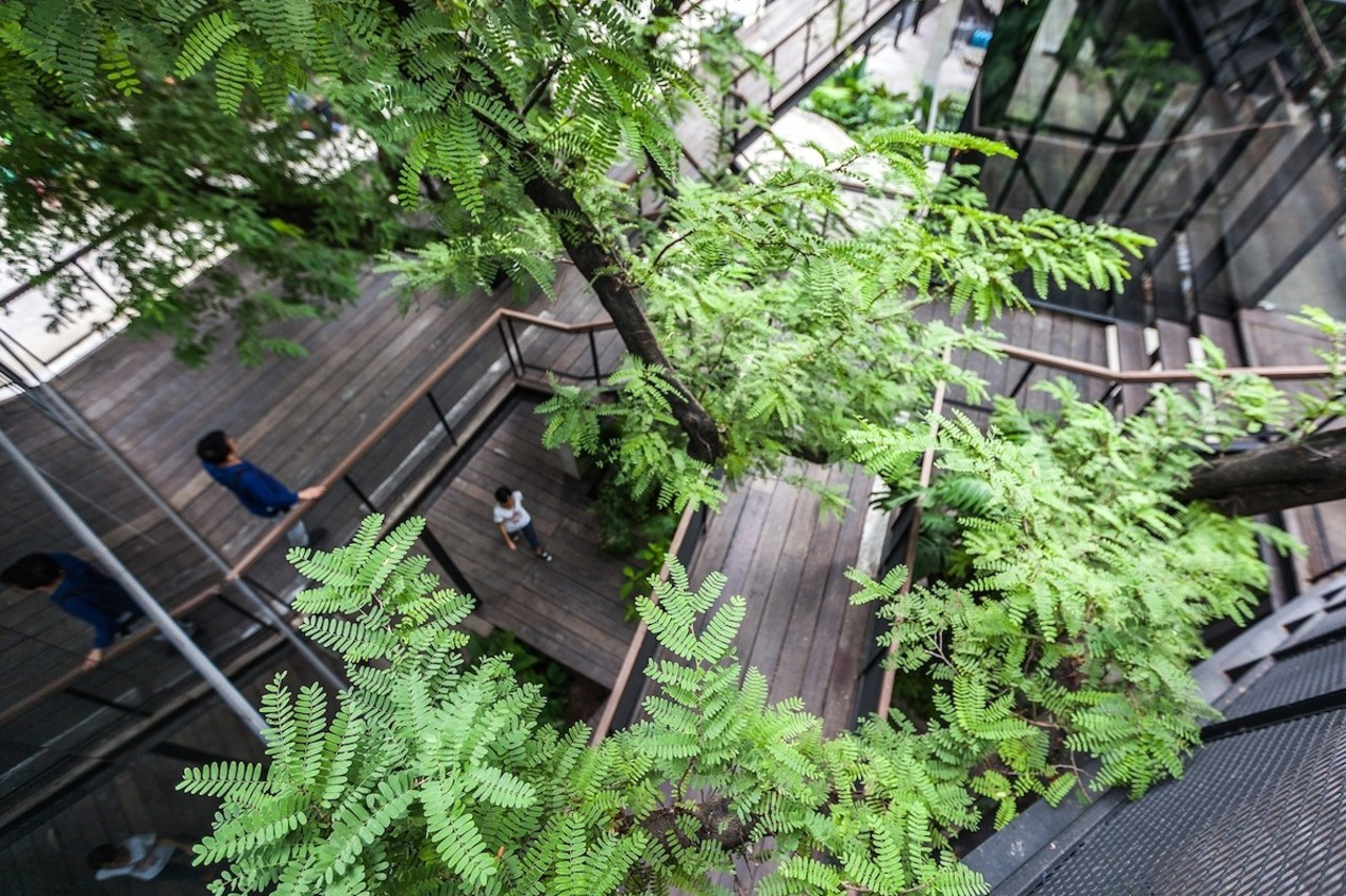 Looking down through the trees outdoor structure, plant, tree, green