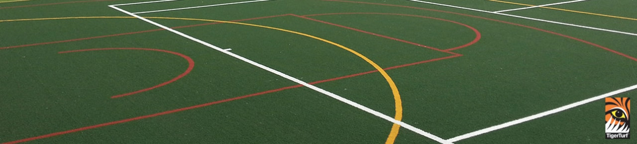 Holding large functions for family and friends is artificial turf, field hockey, field lacrosse, flooring, grass, green, lacrosse, line, parallel, plant, race track, sport venue, sports, stadium, team sport, green