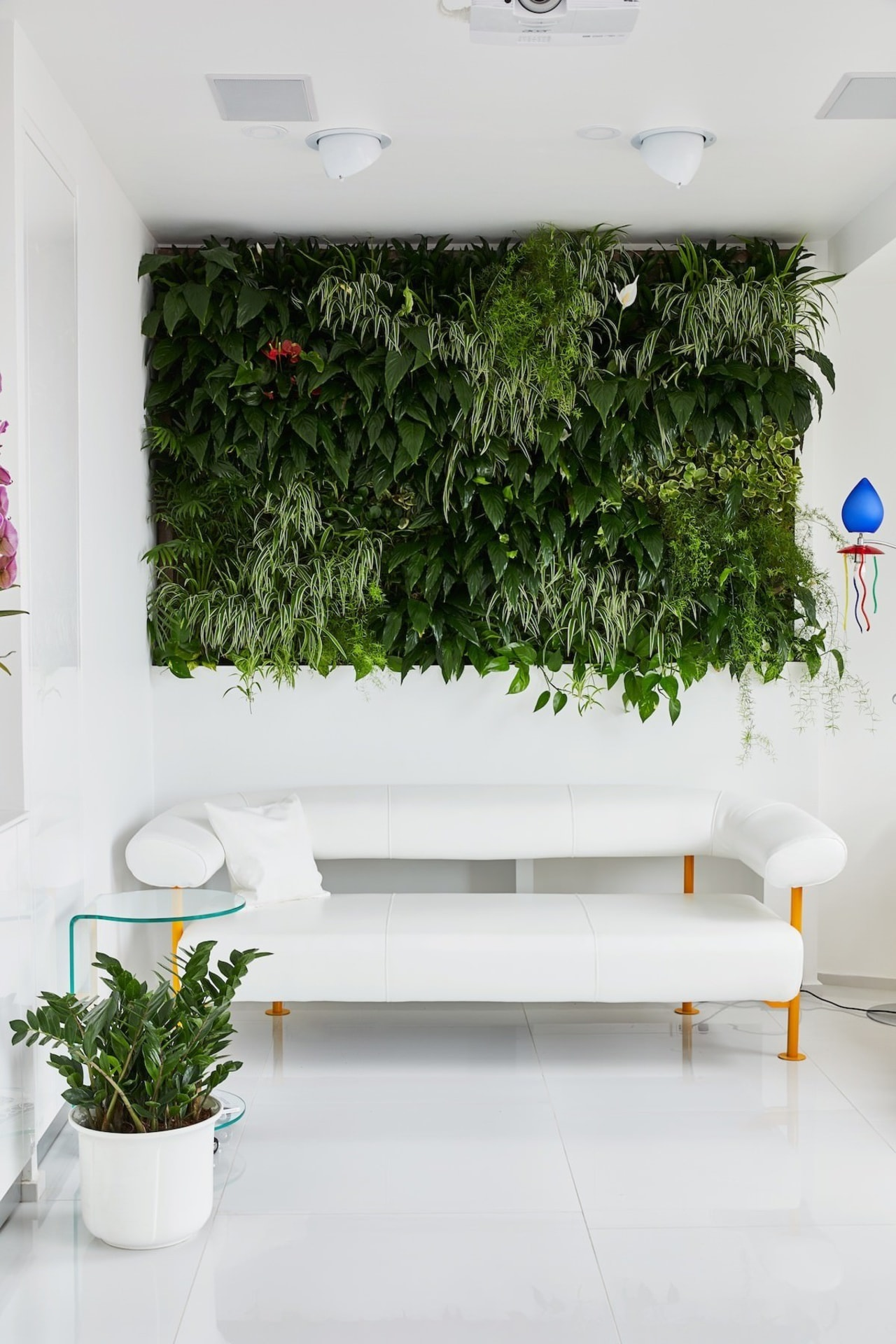 Another view of the green wall flowerpot, interior design, plant, wall, white
