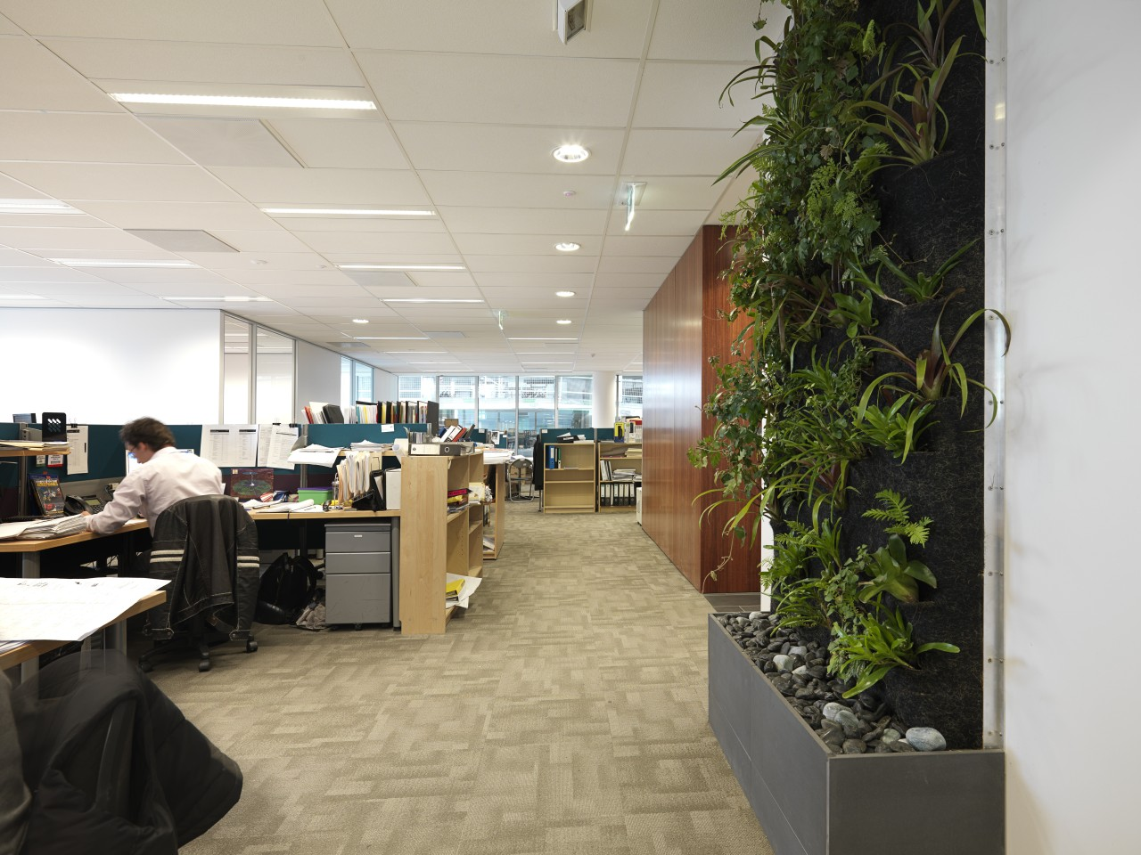 Bio-filtration was installed in five areas throughout Umow institution, interior design, office, gray