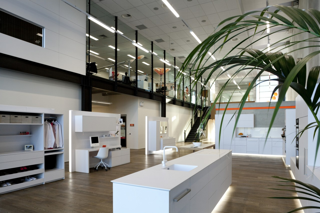 Interior with white display kitchen and palm. architecture, ceiling, daylighting, interior design, gray
