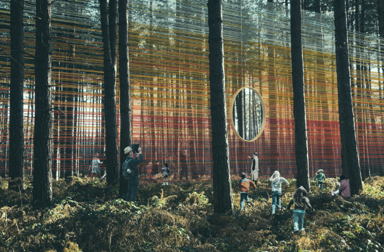 In the Komorebi installation visitors can feel the biome, botany, forest, grove, leaf, natural environment, old-growth forest, plant, sunlight, temperate coniferous forest, tree, wood, woodland, black