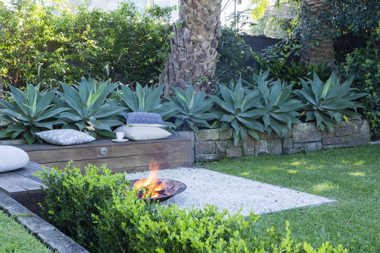 Well placed greenery will make all the difference agave, arecales, backyard, botanical garden, courtyard, flora, flower, garden, grass, landscape, landscaping, lawn, outdoor structure, plant, shrub, tree, vegetation, walkway, yard, green