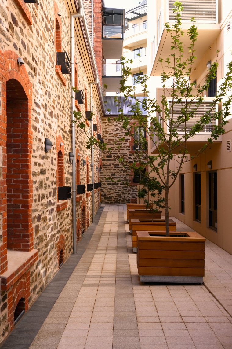 Trees in timber planter boxes in paved lane alley, apartment, brick, courtyard, facade, home, neighbourhood, real estate, brown, orange