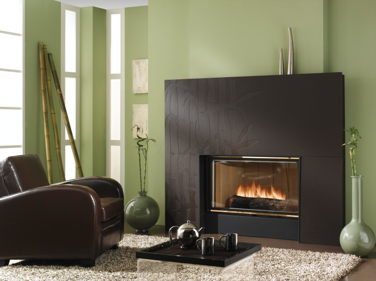 View of heat-efficient fireplace with cherry blossom surround fireplace, furniture, hearth, home appliance, interior design, living room, wood burning stove, black, green