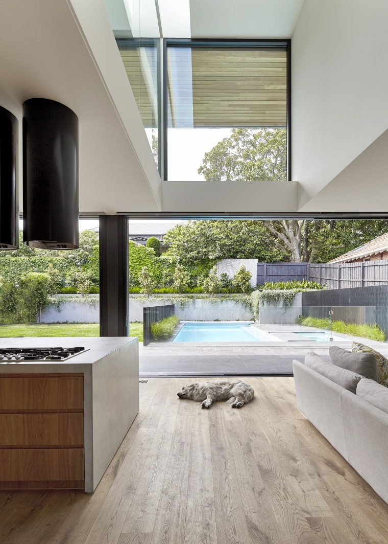 Views and the sun are maximised thanks to architecture, daylighting, floor, flooring, hardwood, home, house, interior design, kitchen, laminate flooring, living room, window, wood, wood flooring, gray