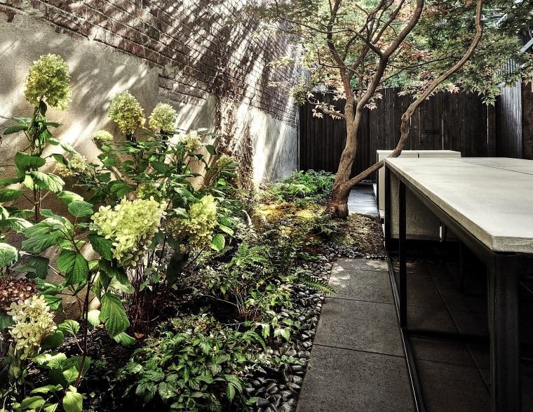 Backyard innovation - backyard | botanical garden | backyard, botanical garden, botany, flower, forest, garden, house, jungle, landscape, leaf, natural environment, plant, shrub, spring, sunlight, table, tree, vegetation, wood, yard, black