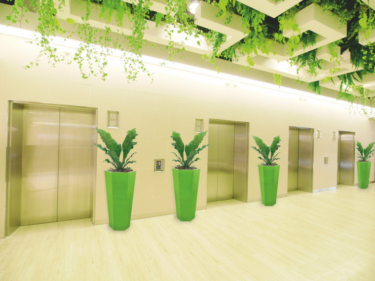 Biophilic design is an increasing trend around the ceiling, design, flowerpot, green, houseplant, interior design, plant, room, yellow