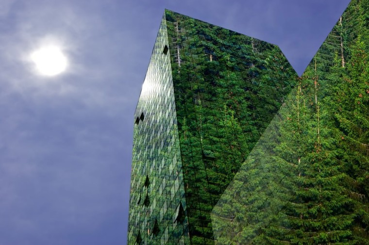 Green is good – Read the new Bayleys biome, building, daytime, forest, grass, green, leaf, nature, sky, tree, vegetation, green, blue