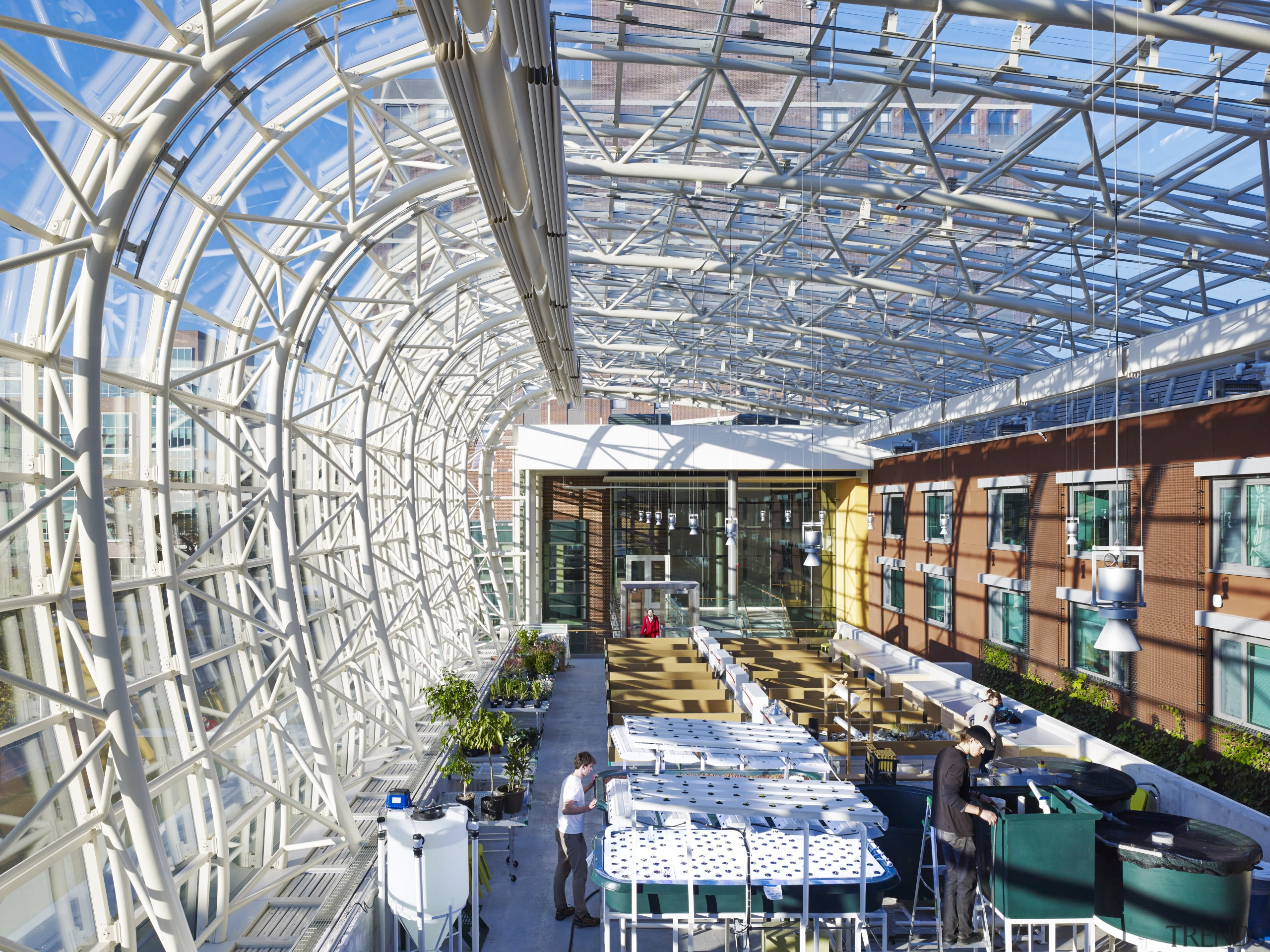 Work in the Ecodome at the Institute of daylighting, greenhouse, mixed use, real estate, roof, structure, gray