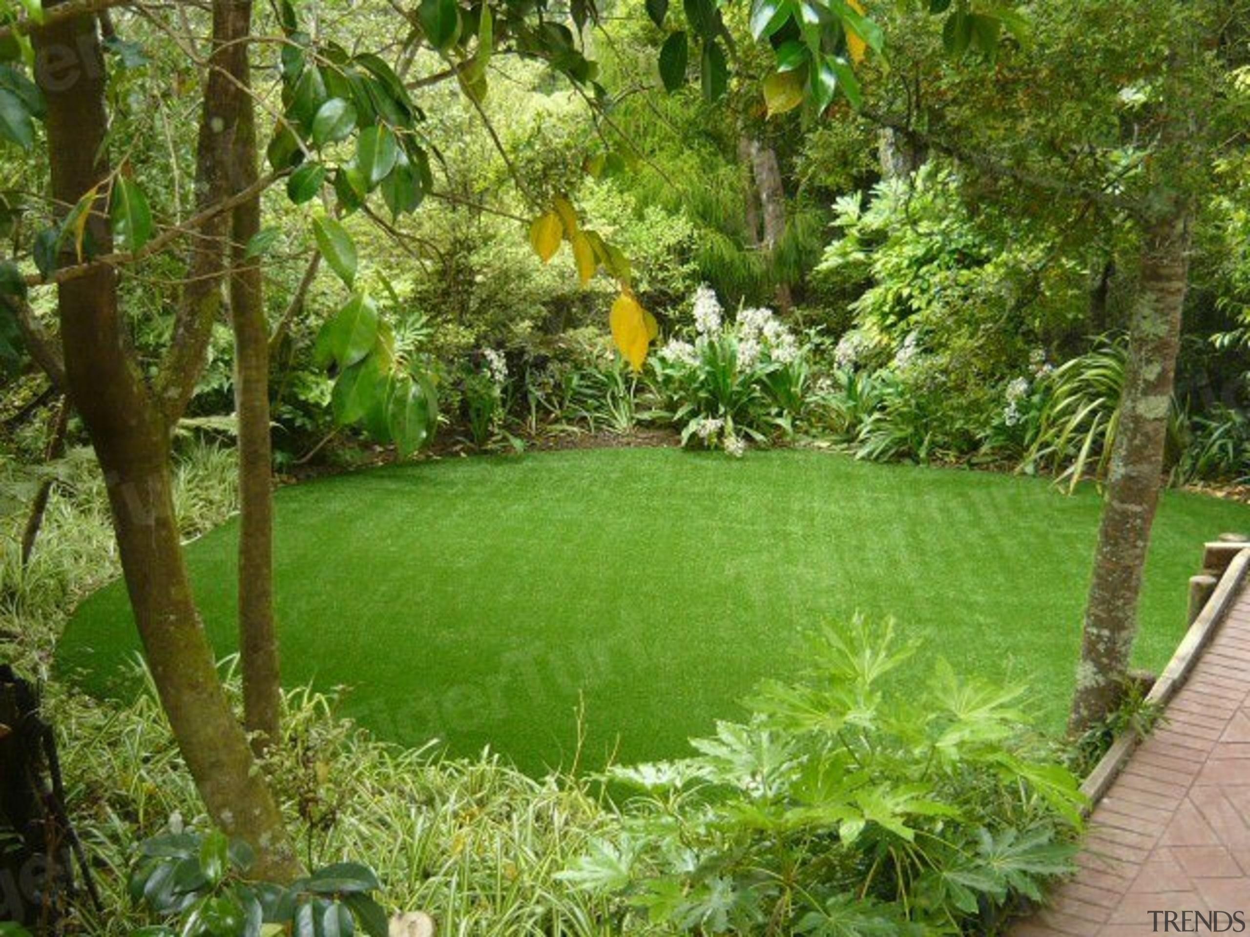 7B088 Wmhansen After - biome | botanical garden biome, botanical garden, ecosystem, garden, grass, lawn, nature reserve, plant, tree, vegetation, yard, green, brown