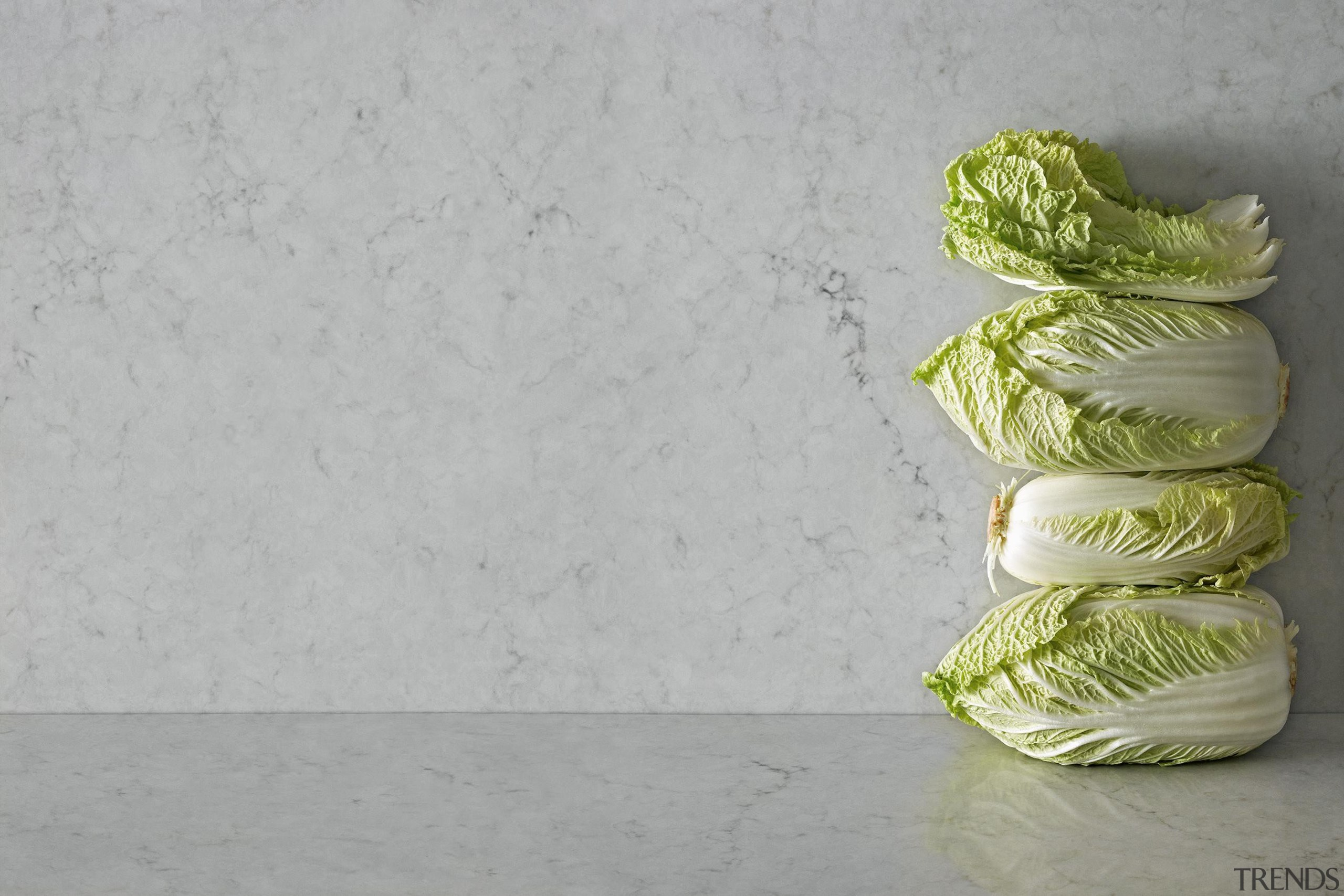 An eloquent opaque light grey with soft charcoal cabbage, green, produce, still life photography, gray