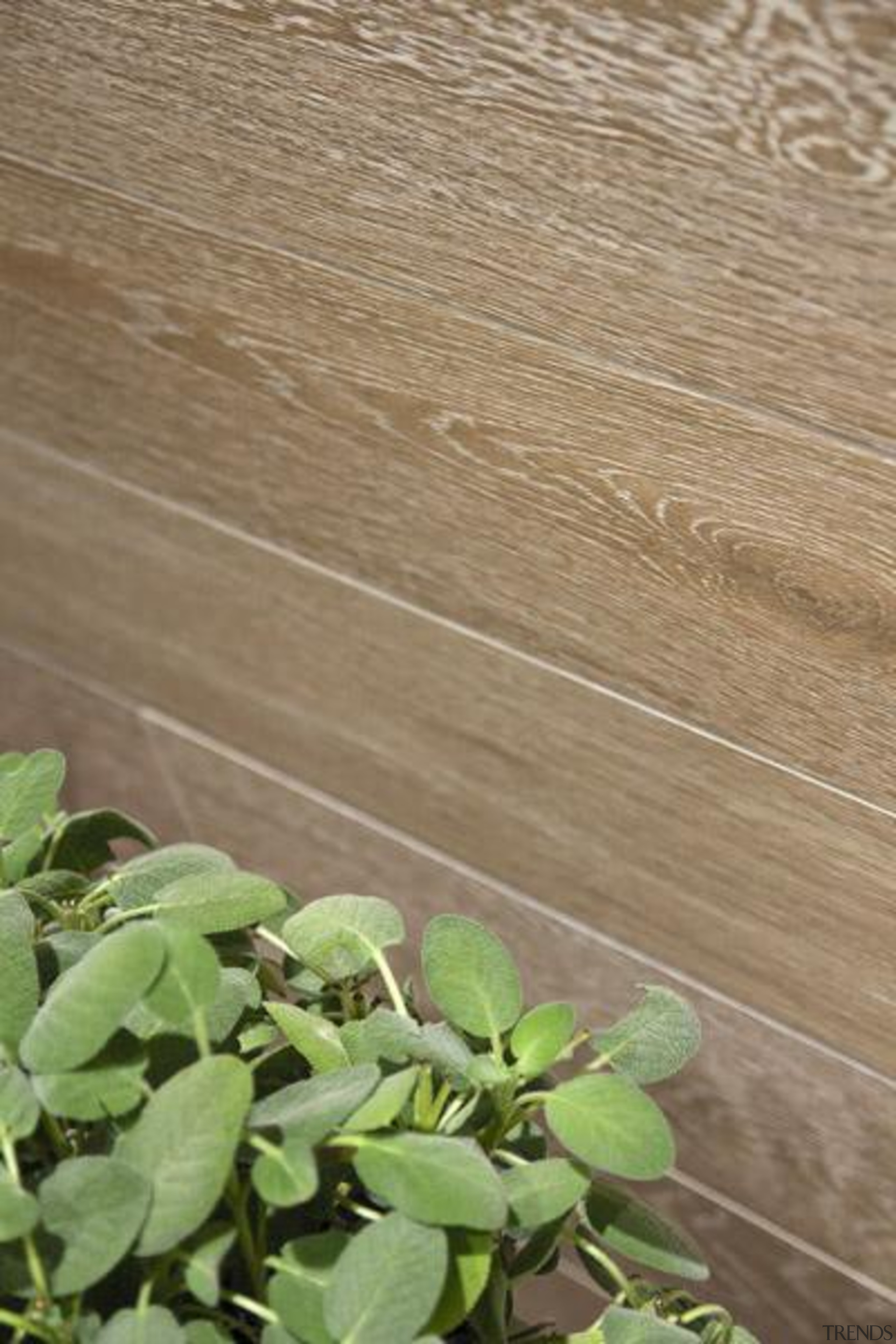 Bioplank noisette interior wall tile. - Bioplank - grass, leaf, plant, wood, brown