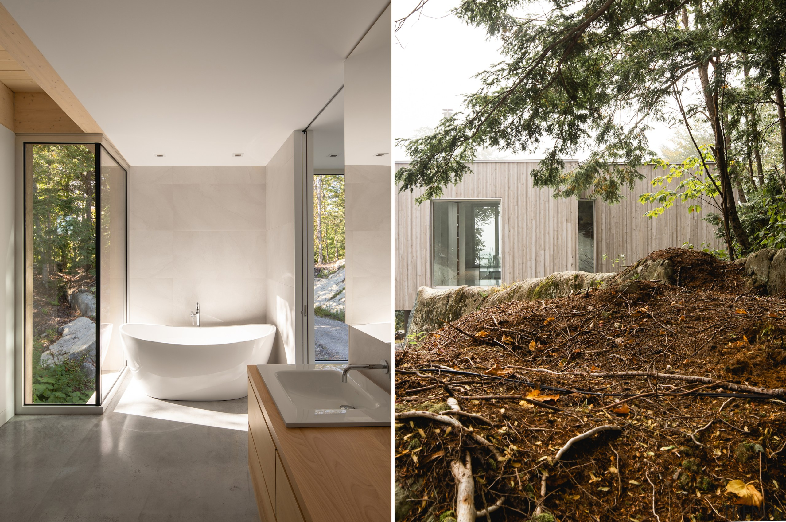 Soaking in nature is easy in the home's