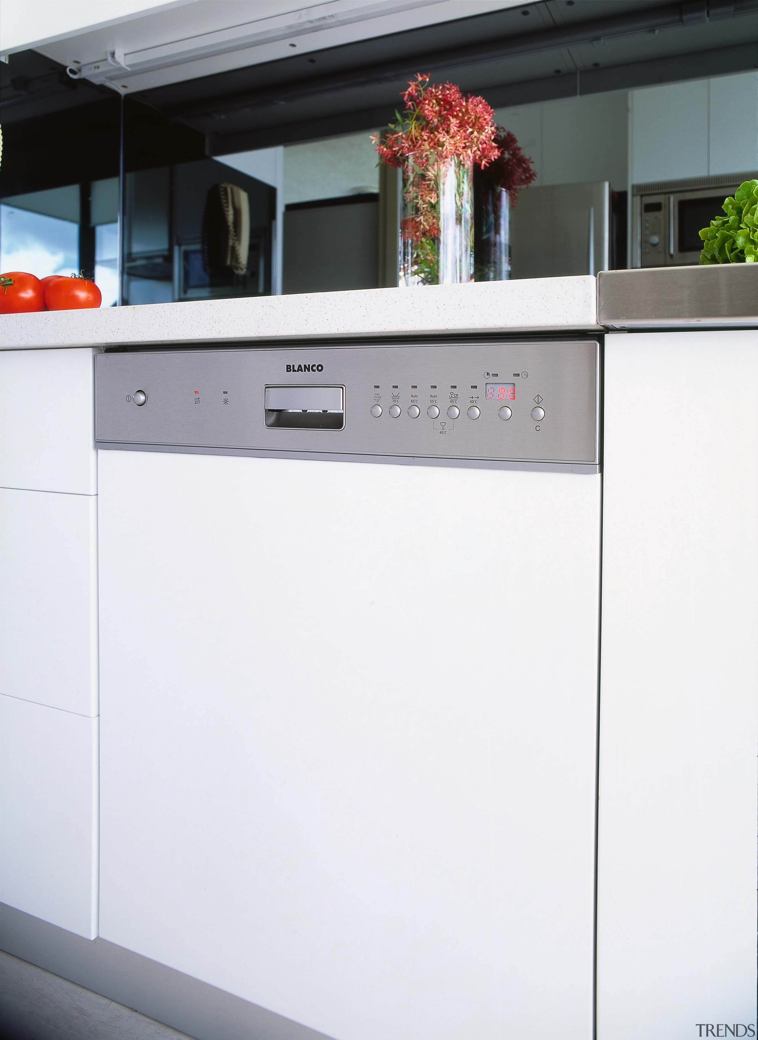 view of the Blanco dishwasher - view of home appliance, kitchen, kitchen appliance, kitchen stove, major appliance, product, product design, white