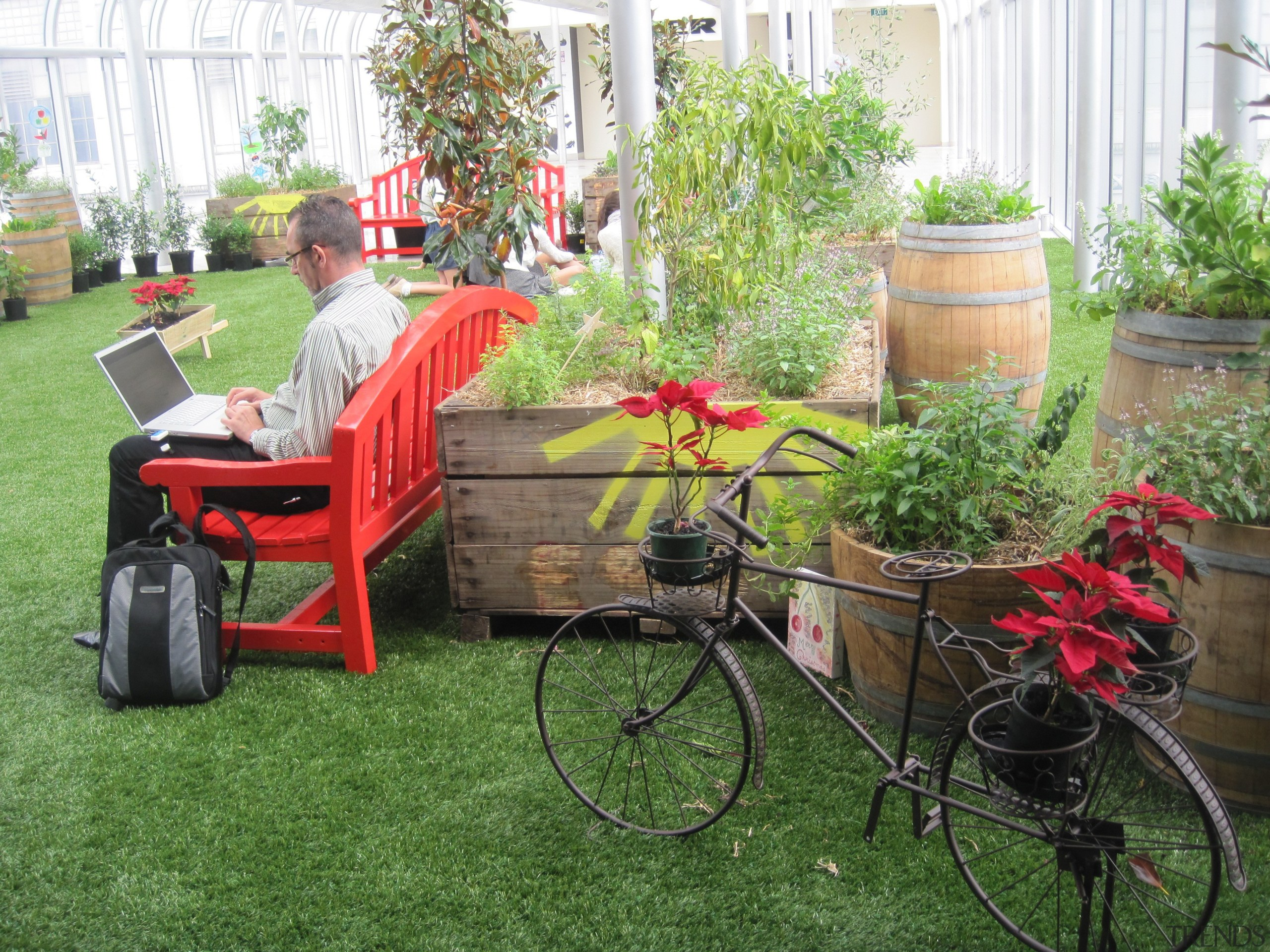 Commercial landscape - backyard | bicycle | bicycle backyard, bicycle, bicycle accessory, carriage, cart, flower, garden, grass, lawn, plant, product, tree, vehicle, yard, green