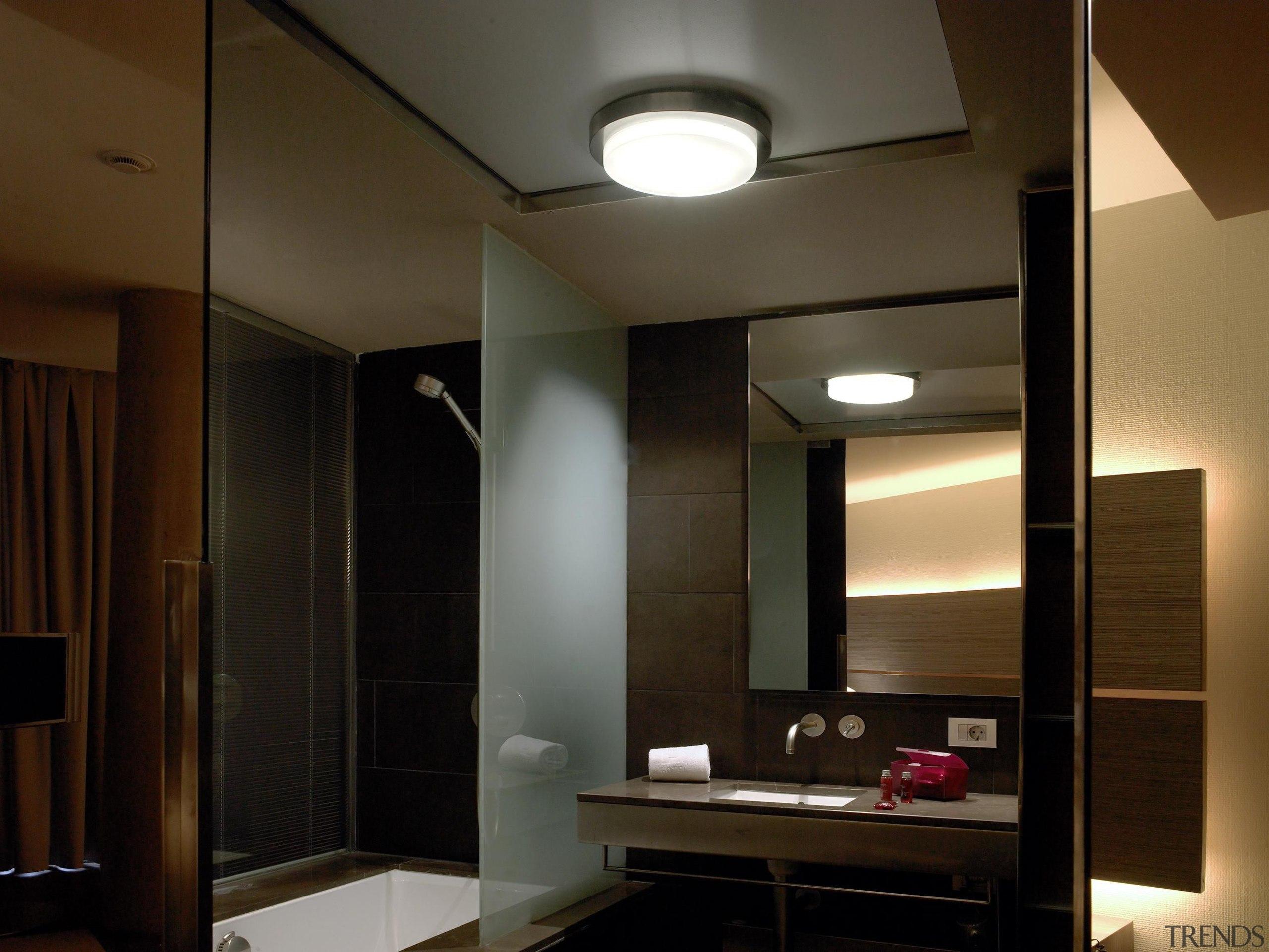 Ceiling Lights - Ceiling Lights - ceiling | ceiling, daylighting, interior design, light, light fixture, lighting, room, brown, black