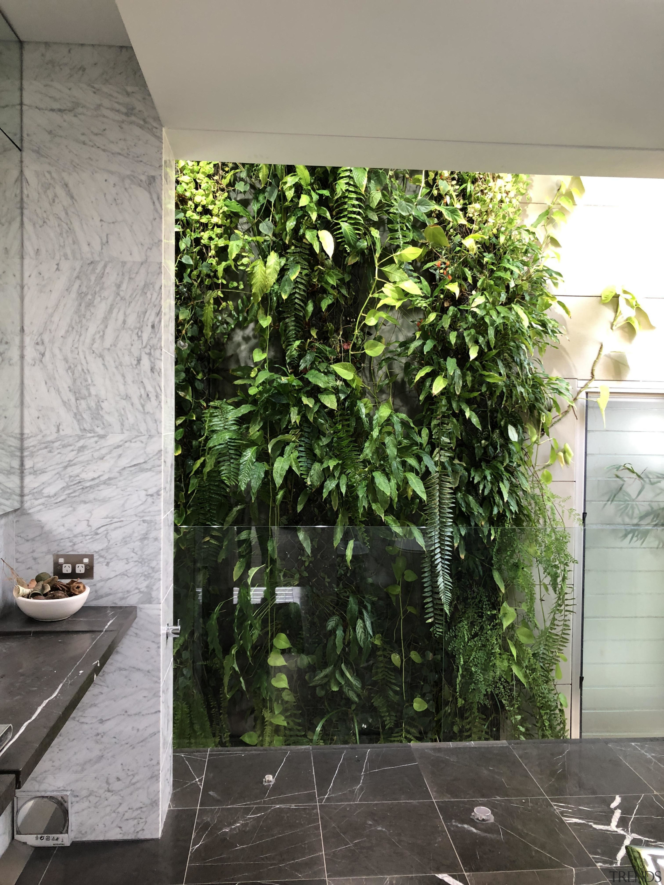 What you need to know about greening your architecture, building, floor, flooring, green, house, interior design, leaf, material property, plant, real estate, room, tile, tree, wall, gray