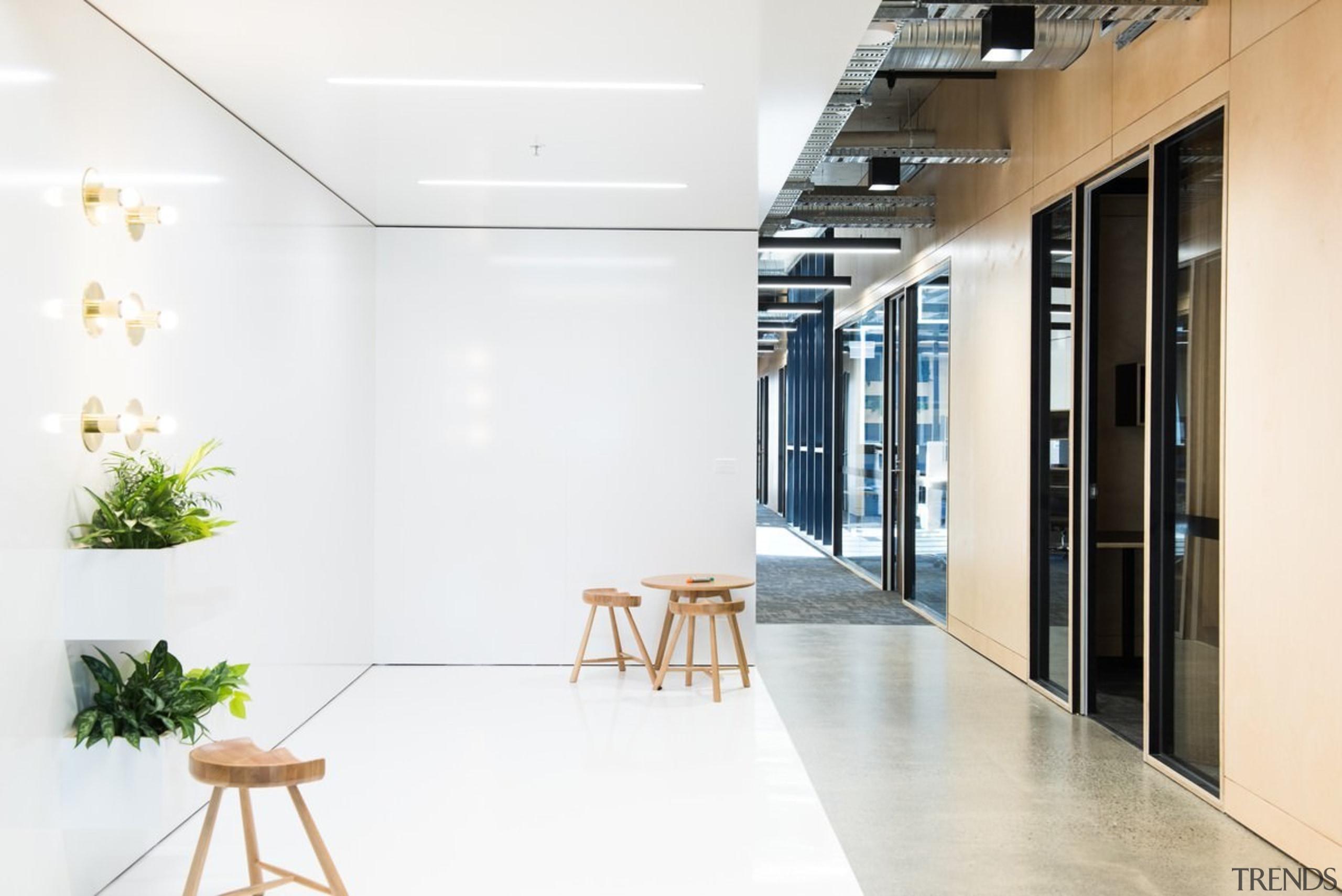 Designed by: Siren Design GroupPhotography by Cheyne architecture, floor, flooring, interior design, lobby, product design, white