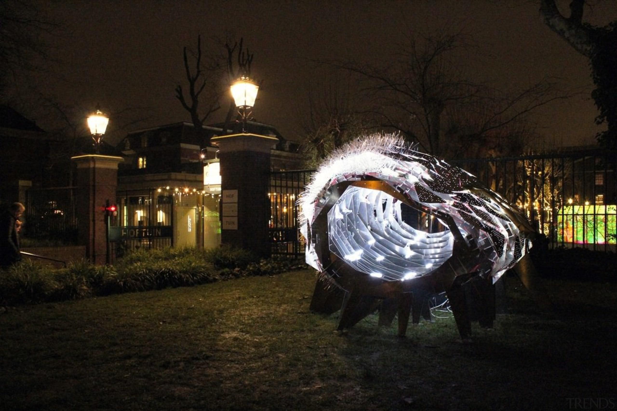 The Flowering Phantasm by Clay Odom - The darkness, evening, light, lighting, night, sky, street light, tree, black