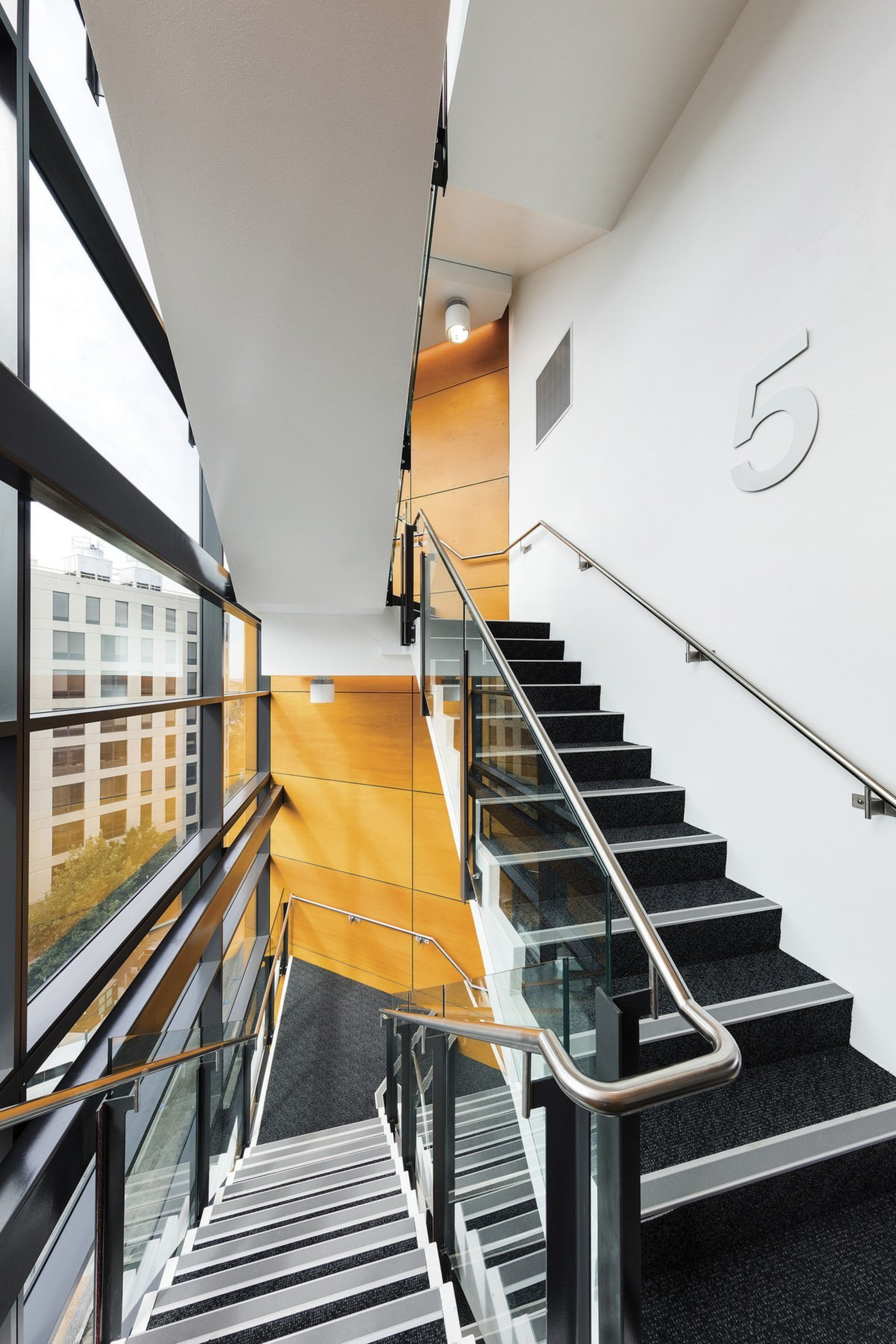 Newcastle Courthouse – Cox Architecture - Newcastle Courthouse architecture, building, daylighting, glass, handrail, house, interior design, stairs, gray, white