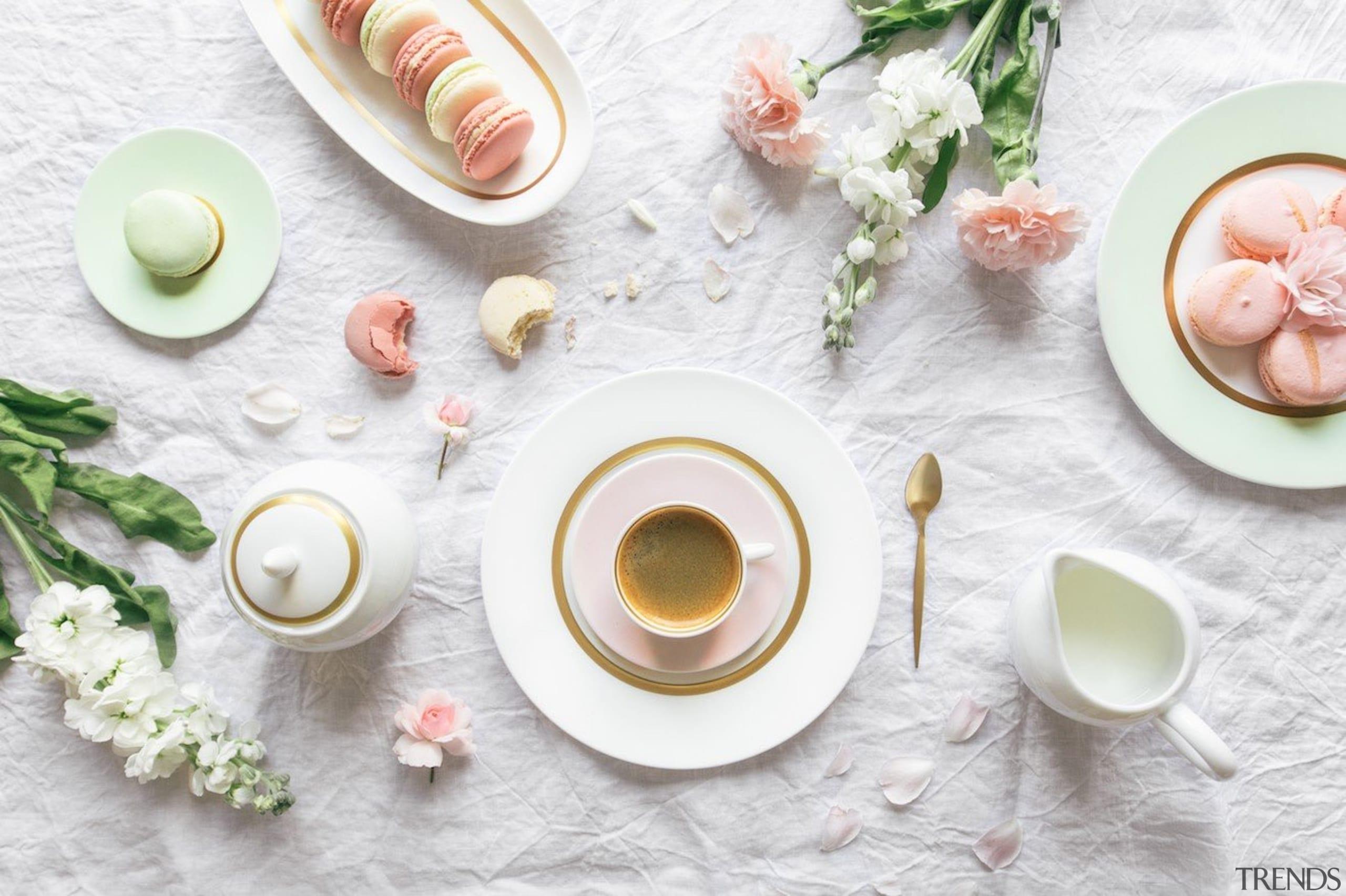 Bernardaud Cronos Collection - Bernardaud Cronos Collection - coffee cup, cup, dish, dishware, plate, porcelain, saucer, serveware, tableware, white