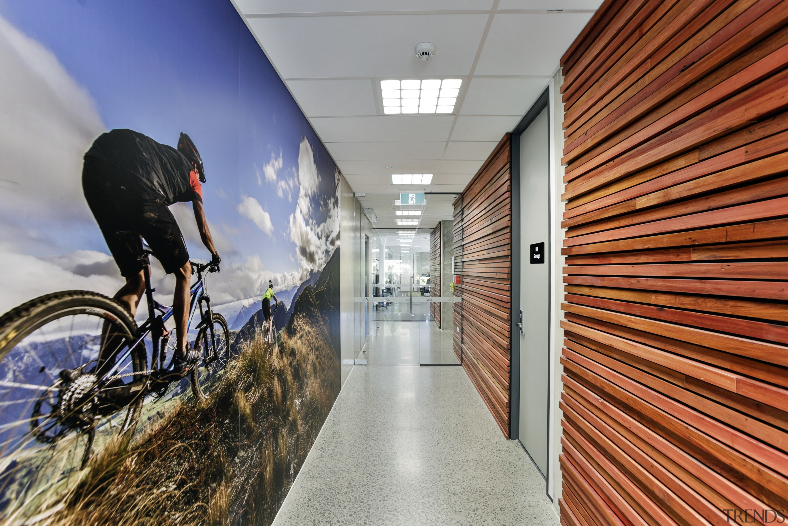 On your bike  this empowering photo mural bicycle, cycling, hybrid bicycle, road bicycle, gray