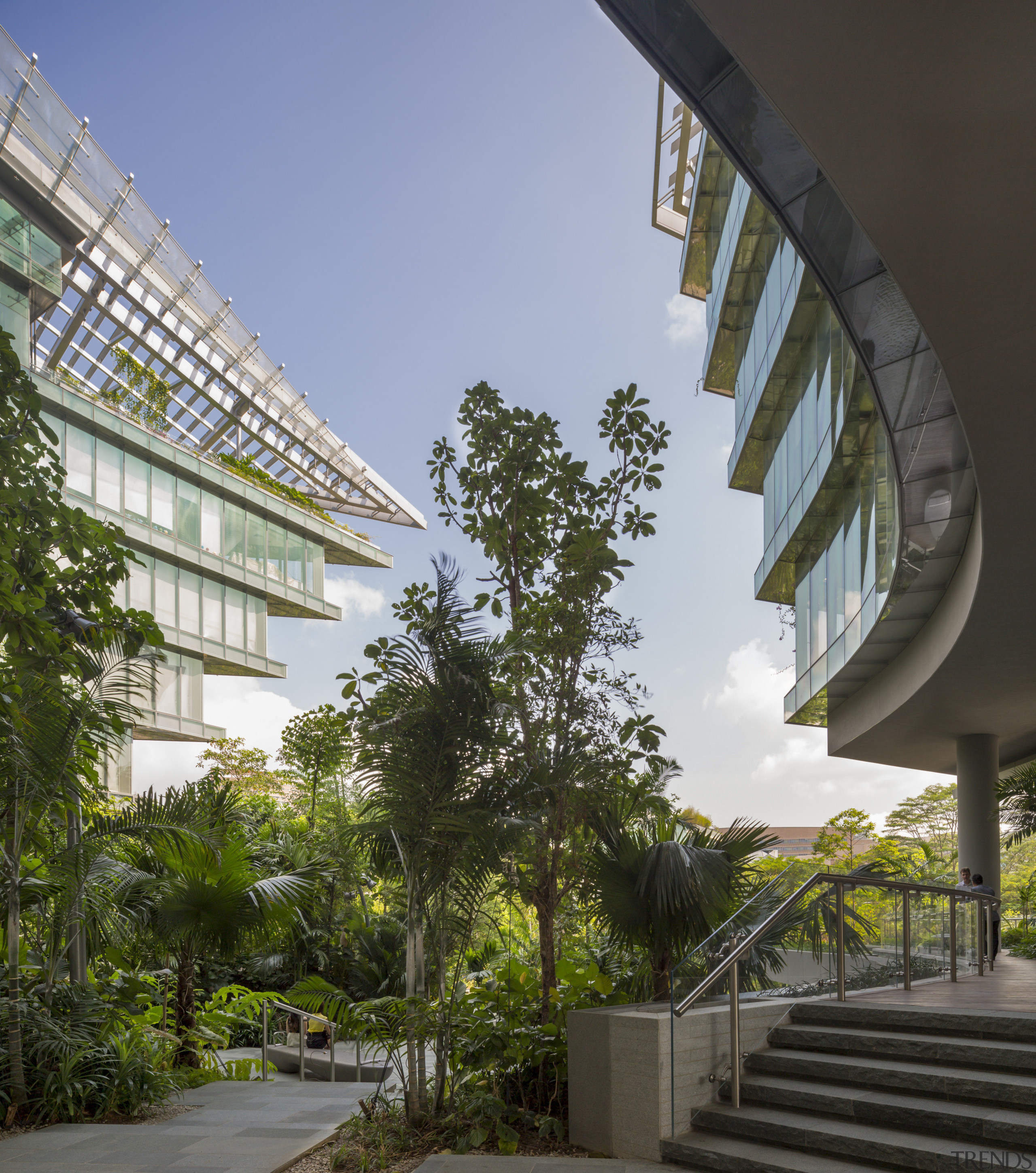 The Sandcrawler office building in Singapore has a architecture, arecales, building, condominium, daytime, house, mixed use, palm tree, real estate, sky, tree, urban design, black