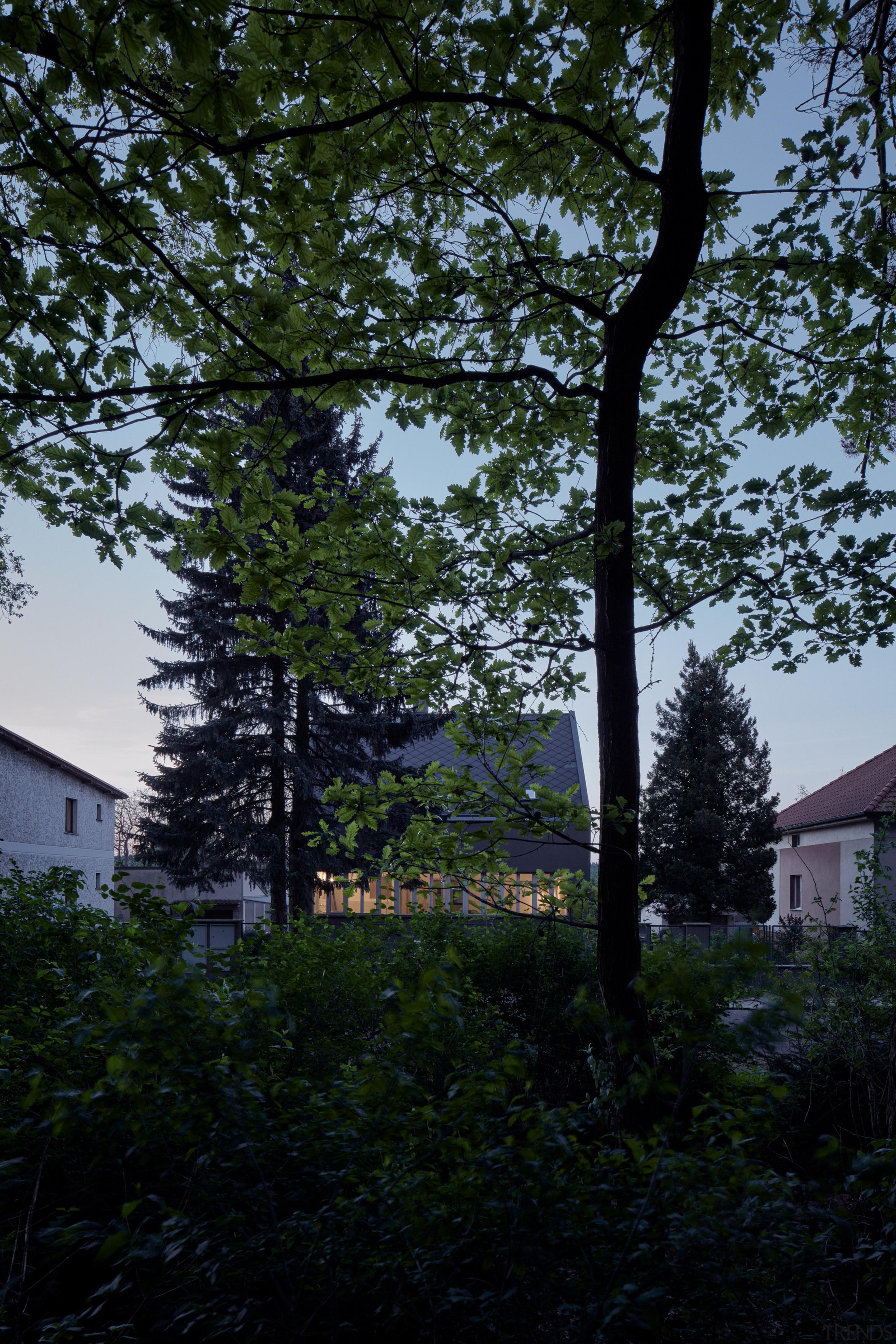 This renovation celebrates the original home's pretty, simple-house
