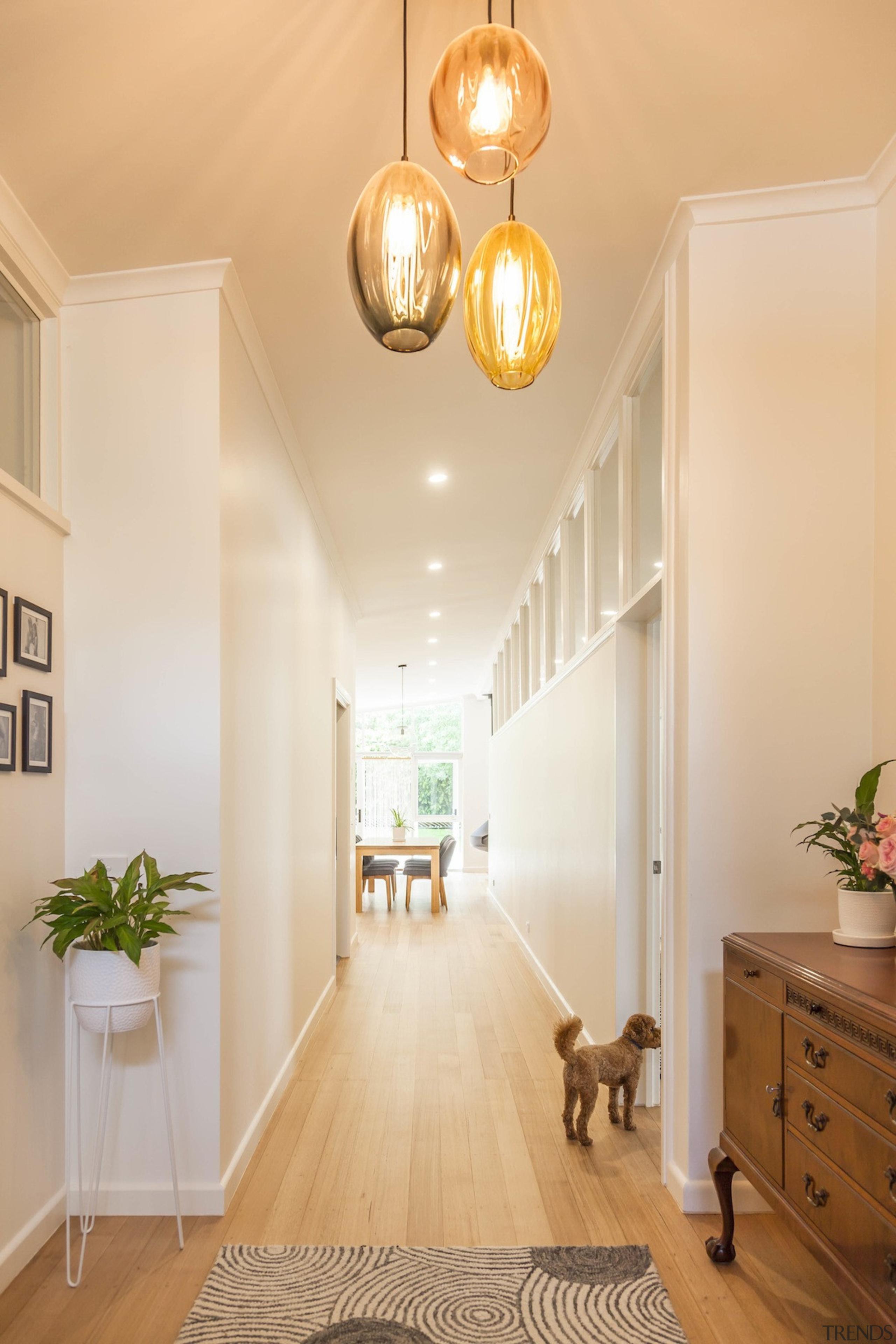 A light arrangement in the hallway - A ceiling, daylighting, floor, flooring, hardwood, home, interior design, lighting, living room, molding, real estate, room, wall, window, wood, wood flooring, orange, white