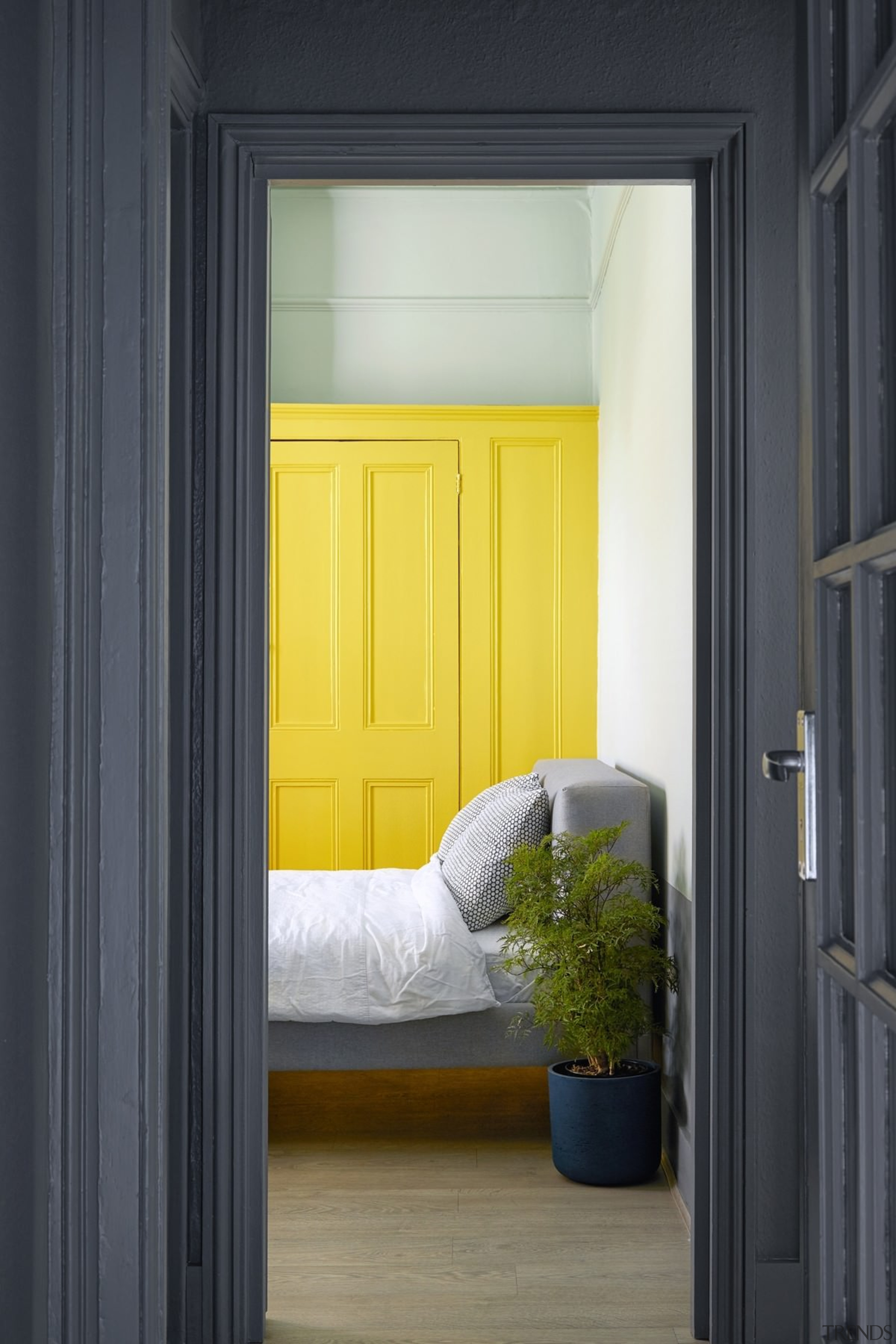 Looking into the bedroom - Looking into the door, home, house, interior design, window, yellow, black, gray