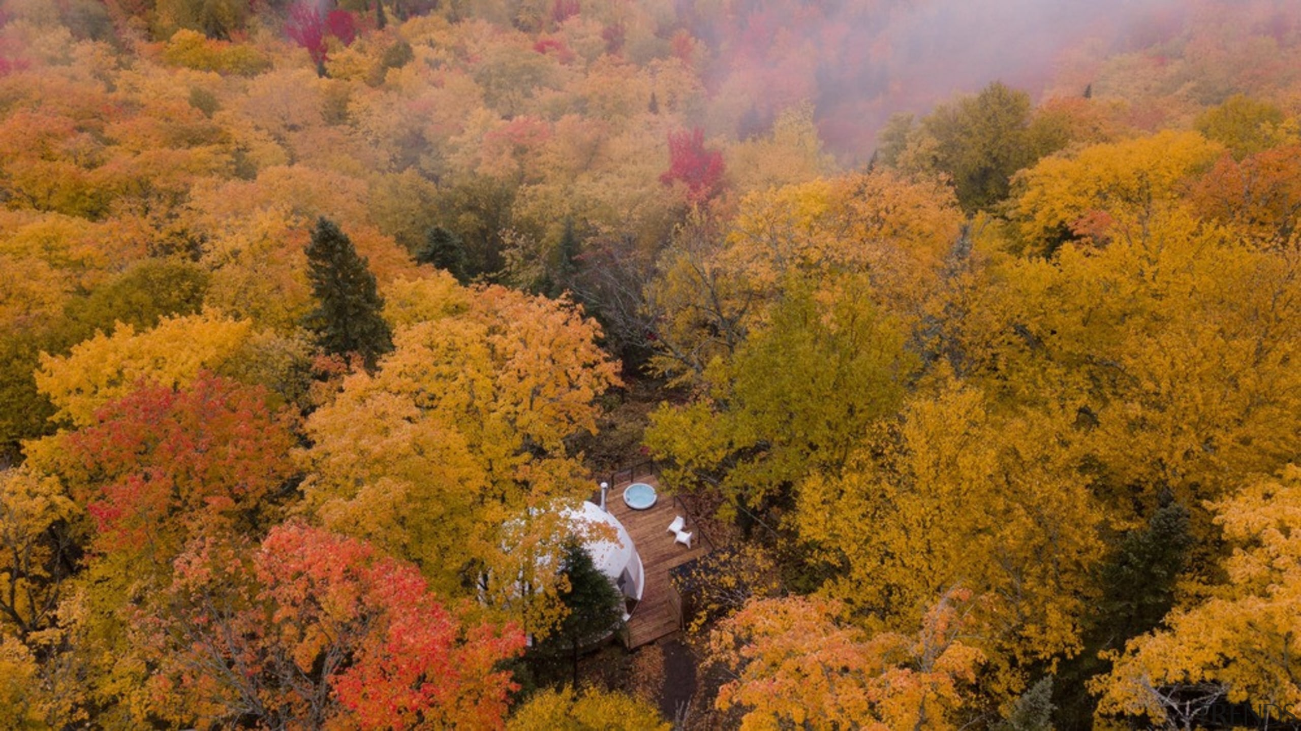Dome 4 - autumn | biome | deciduous autumn, biome, deciduous, forest, landscape, leaf, national park, nature, sky, temperate broadleaf and mixed forest, tree, wilderness, brown