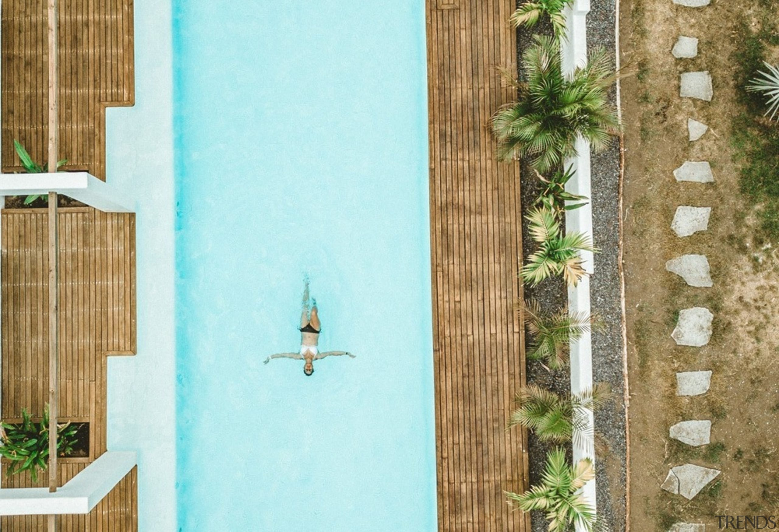 Swell - a surf and lifestyle hotel - door, floor, green, interior design, plant, room, textile, turquoise, wall, window, wood, teal, brown