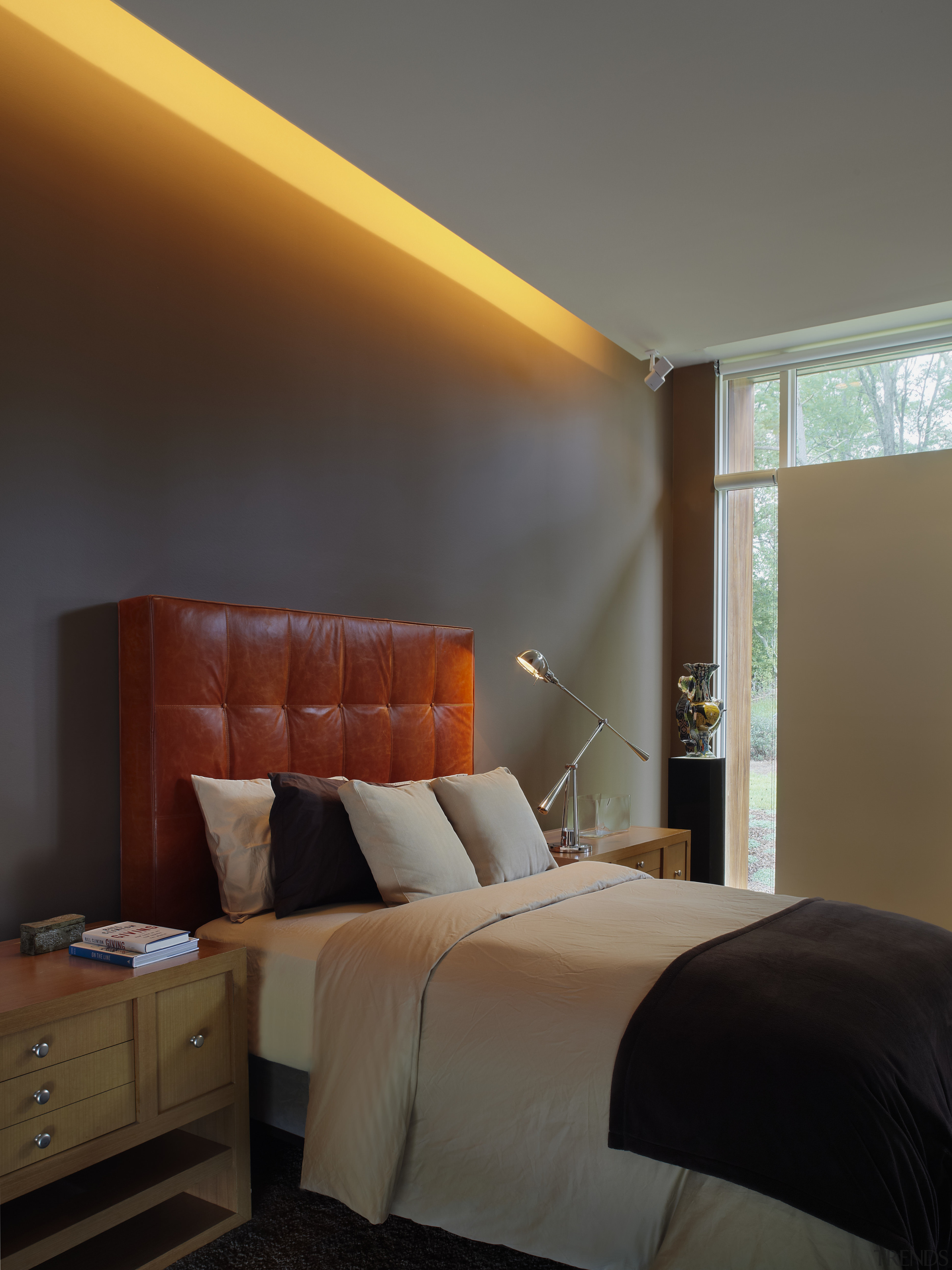 bedroom interior. fluorescent light stretched baove bed, white/grey architecture, bed, bed frame, bedroom, ceiling, daylighting, furniture, home, hotel, interior design, lighting, room, suite, wall, window, wood, black, gray